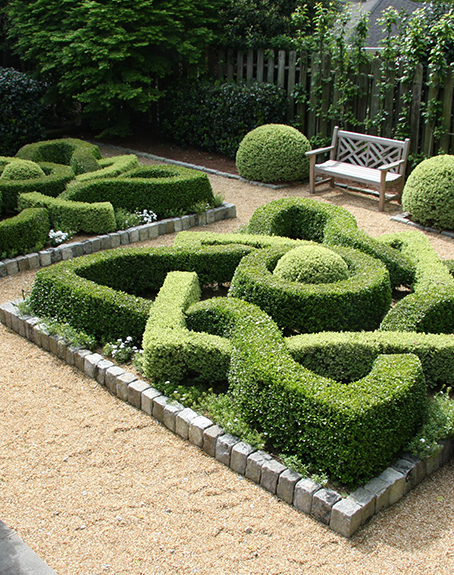 Boxwood garden design ajf design for Tudor knot garden designs
