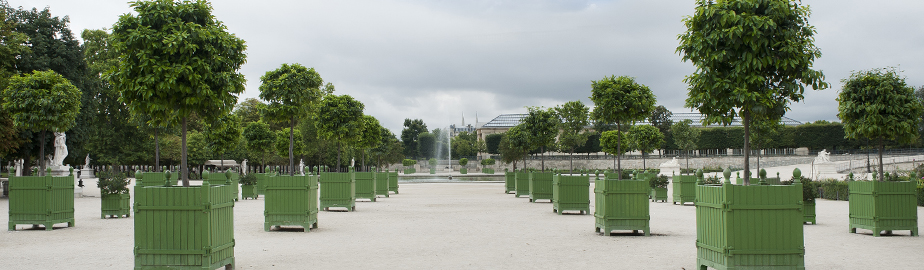 Chateau de Versailles Boxes in the Tuileries Garden